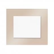 Set DECENTE glass - insert switch, arrangement 1N